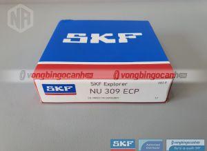 Vòng bi NU 309 ECP SKF chính hãng