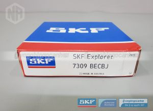 Vòng bi 7309 BECBJ SKF chính hãng
