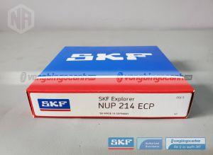 Vòng bi NUP 214 ECP SKF chính hãng